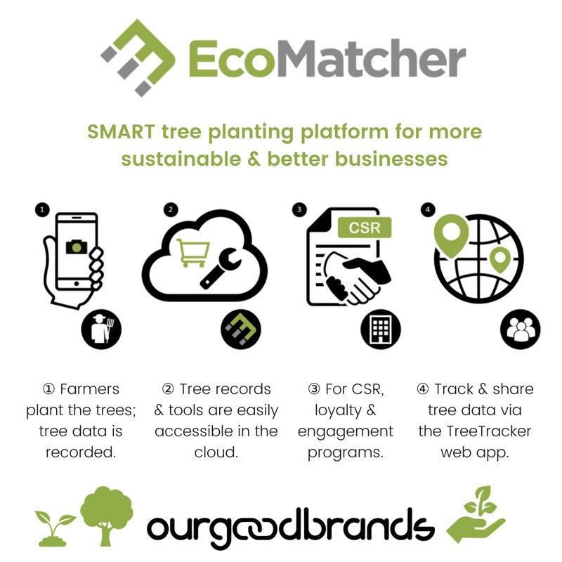 tree planting platform ecomatcher SDG how works infographic
