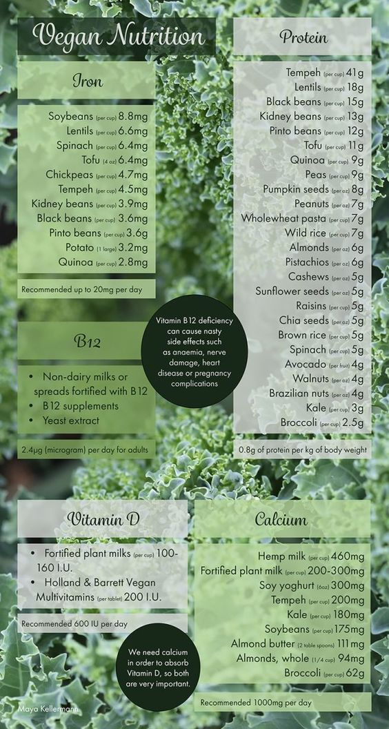 infographic vitamins b12 going vegan eco-friendly bucket list 2019