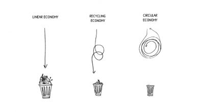 benefits circular fashion business model vs linear economy
