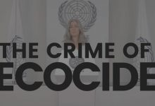 ecocide law polly higgins lawyer criminalise ecological damage earth protectors