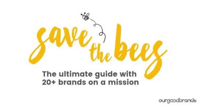Photo of The ultimate guide on how can you save the bees
