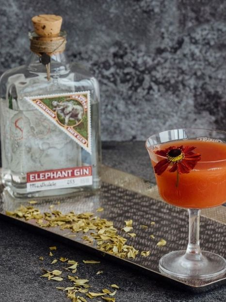 elephant gin premium handcrafted 12 original & unusual gift ideas for eco-friendly Christmas 2019