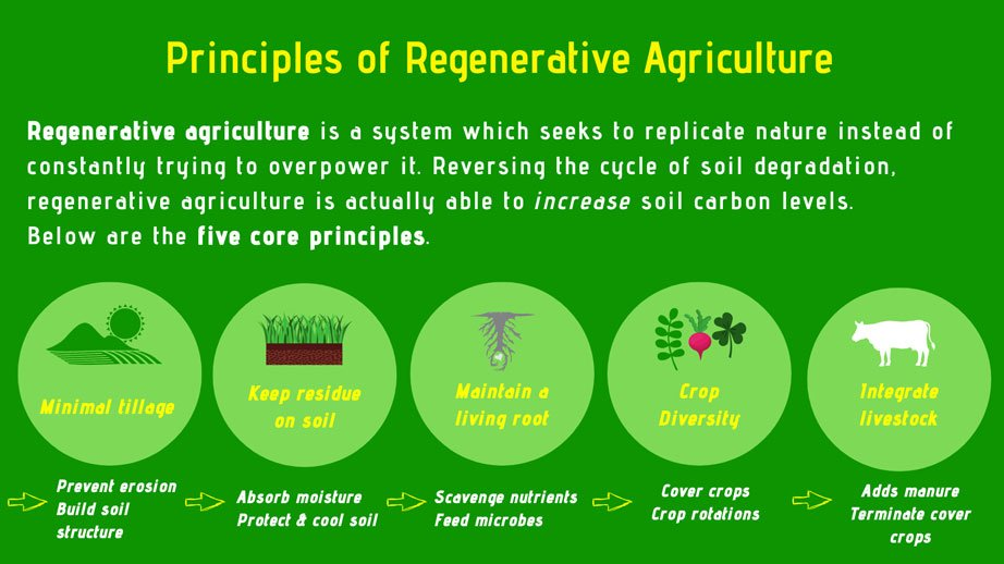 what is regenerative agriculture why matters