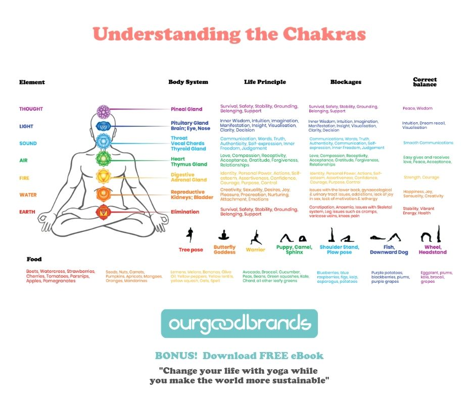 understand seven chakras meaning nadis