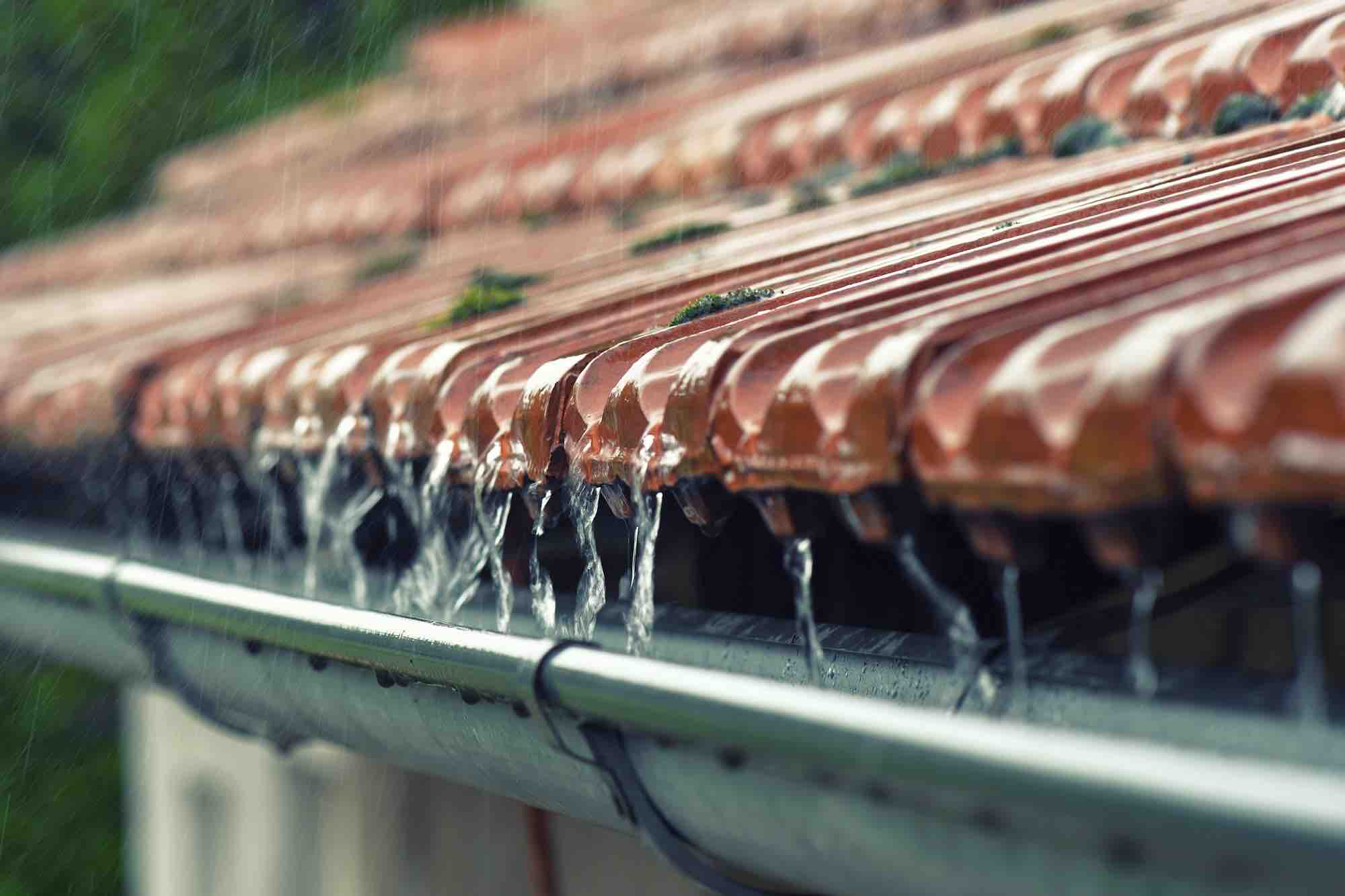 How to harvest rainwater, uses and advantages