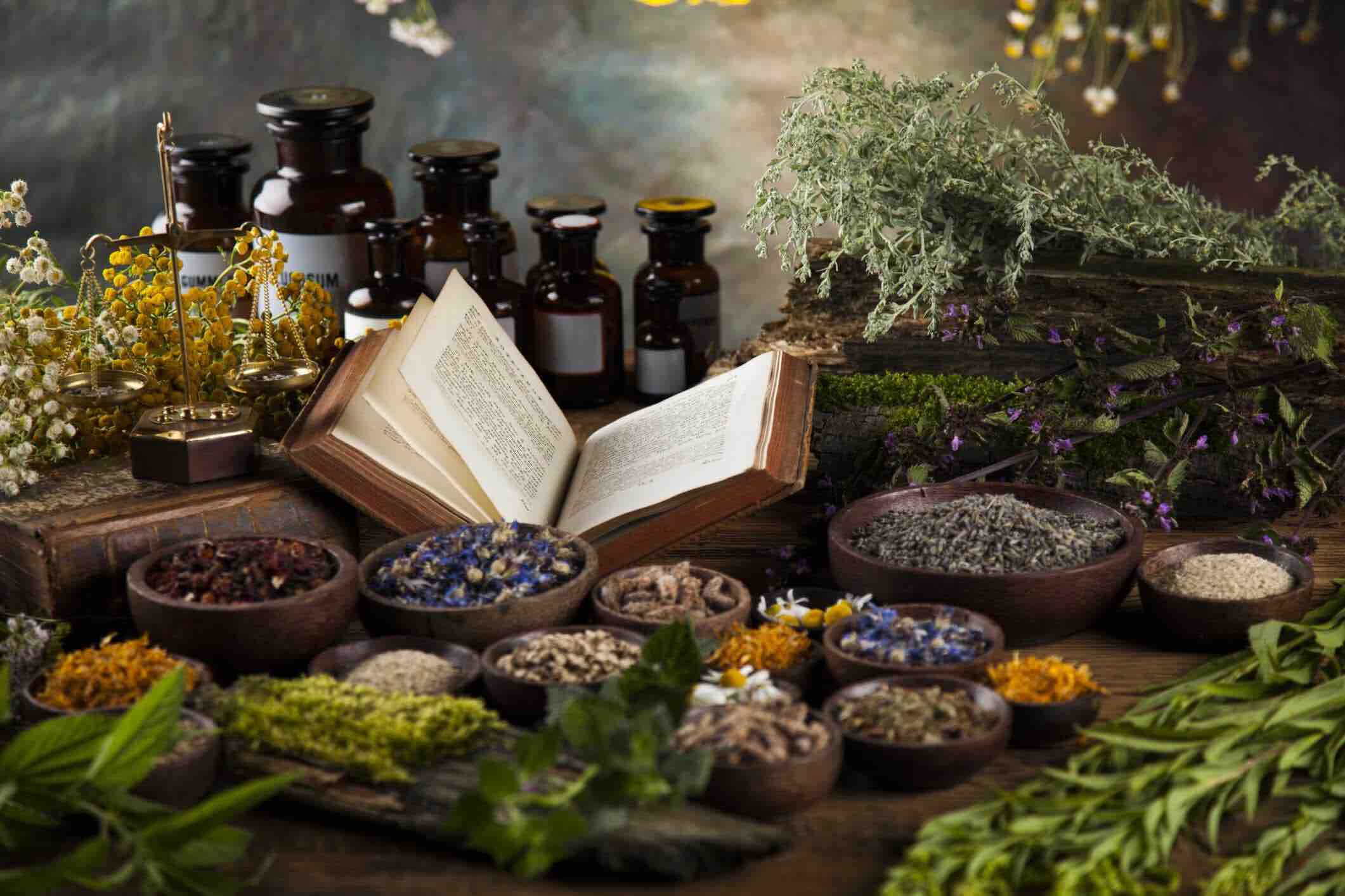 Why you should consider naturopathy medicine | Ourgoodbrands