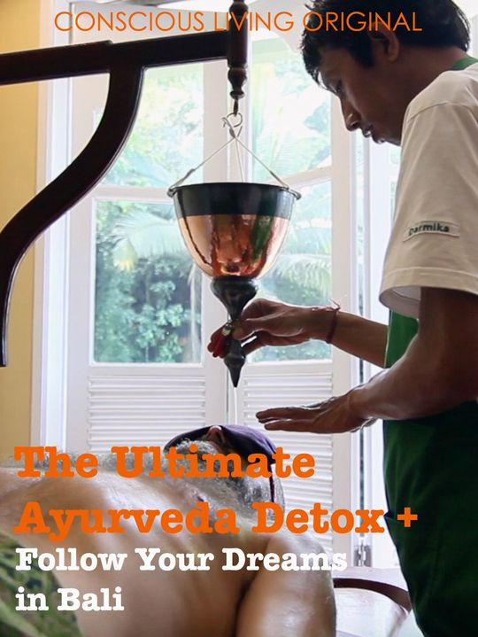 Documentaries sustainability The Ultimate Ayurveda Detox + Follow Your Dreams in Bali by Michael Alexander